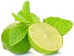lemon-Properties-amazing-ir-1