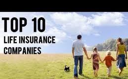بهترین شرکت بیمه